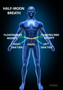 Front_Facing_Body_Diagram_IZZ_DVD